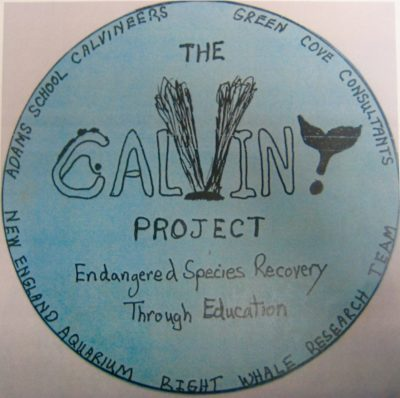 The Calvin Project